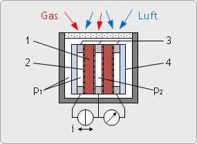 Dynamischer Zirkoniumdioxidsensor